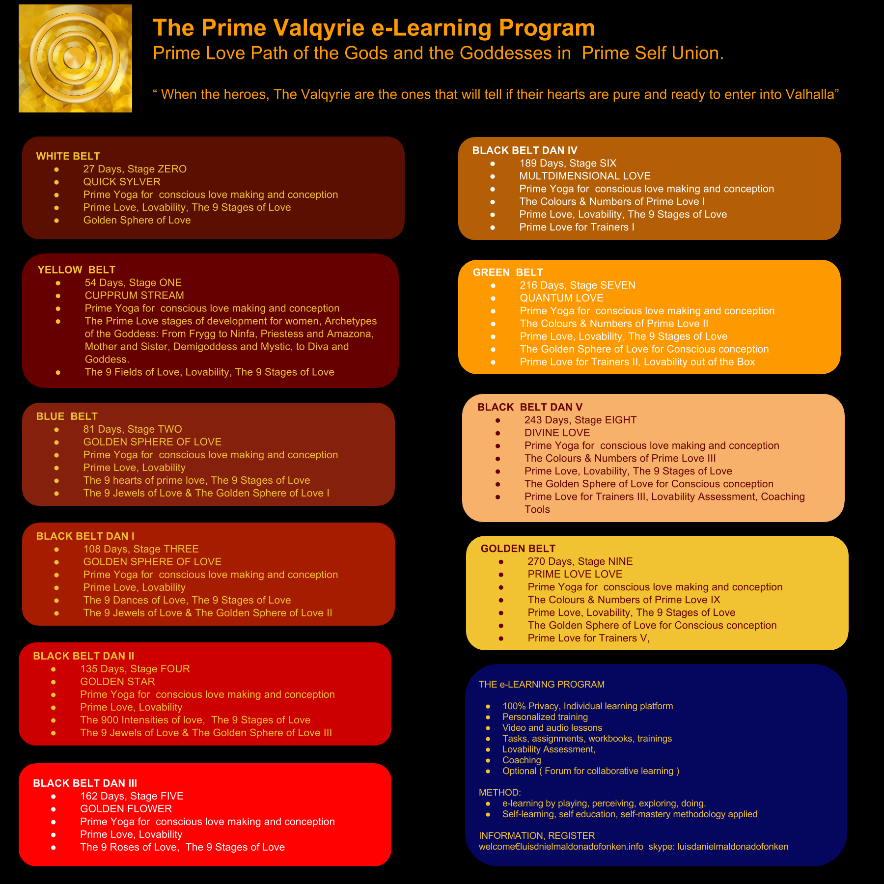 The Prime Valqyrie e-Learning Program